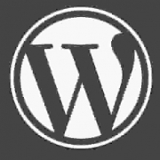 WordPress自带编辑器增加中文字体和大小的功能