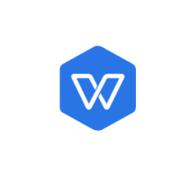WPS2019专业增强版及政府版