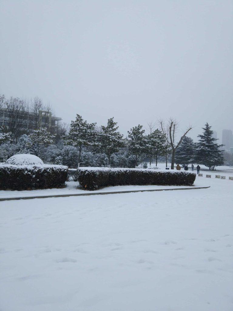 北国的雪-ZAERA