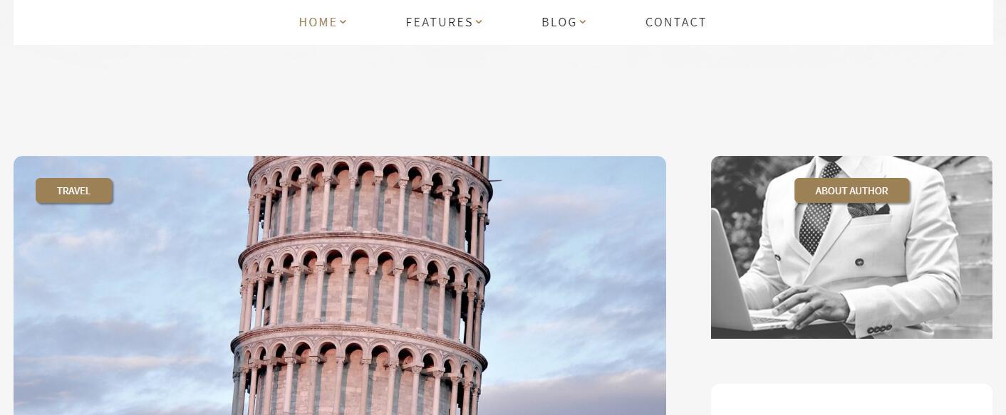 WordPress主题:介绍几个国外漂亮的WordPress主题及感言