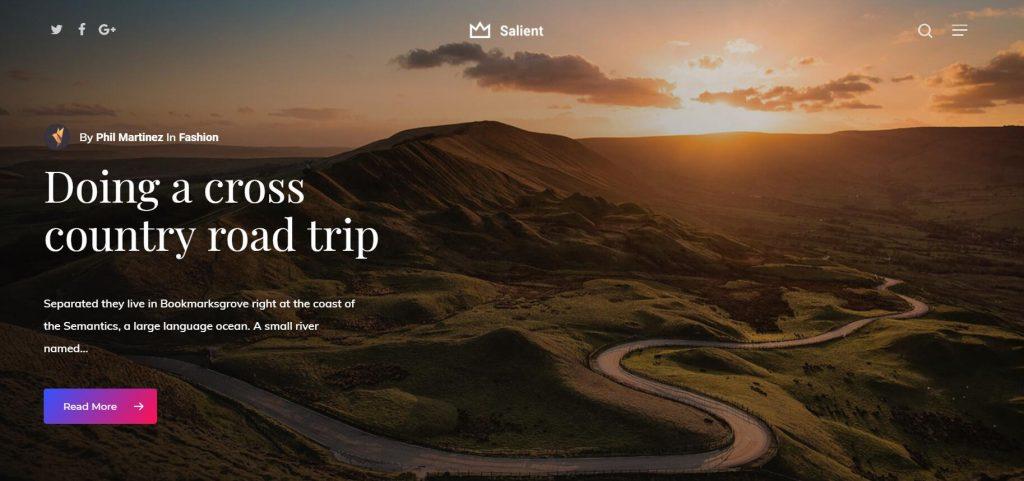 Salient 强大而又漂亮的响应式WordPress主题