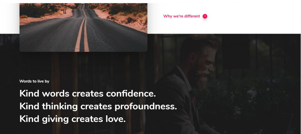 Salient 强大而又漂亮的响应式WordPress主题-ZAERA